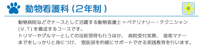 new_2_1_cut